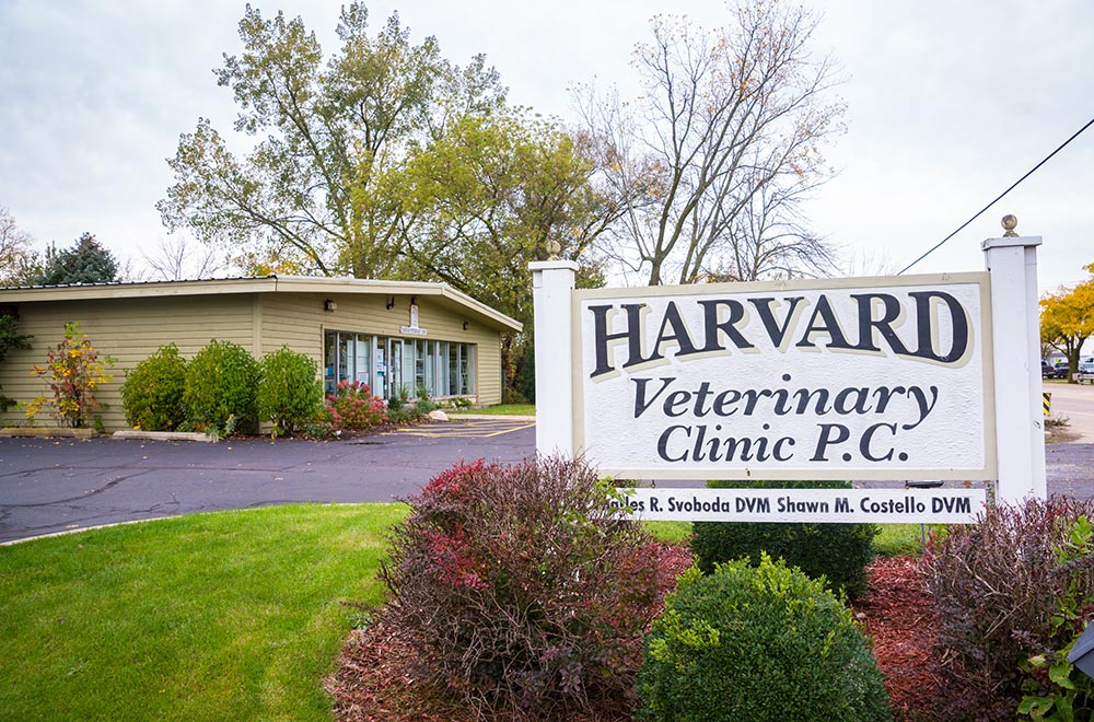 Harvard Veterinary Clinic - Harvard, IL